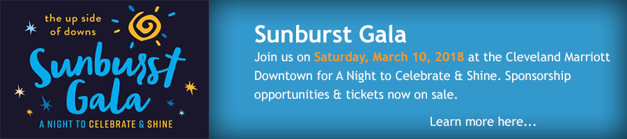 Sunburst Gala 2017